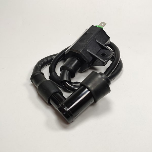 5007.1 Motorcycle Ignition Coil Replaces 21121-1160 21121-1198 For Kawasaki KLF 220 KVF 360 400